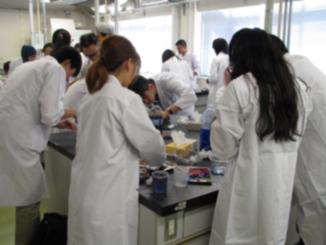 実験する学生たち